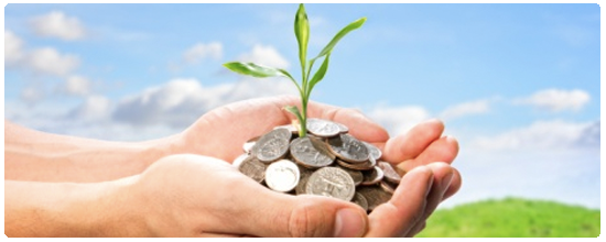 Cupped hands holding coins with plant growing